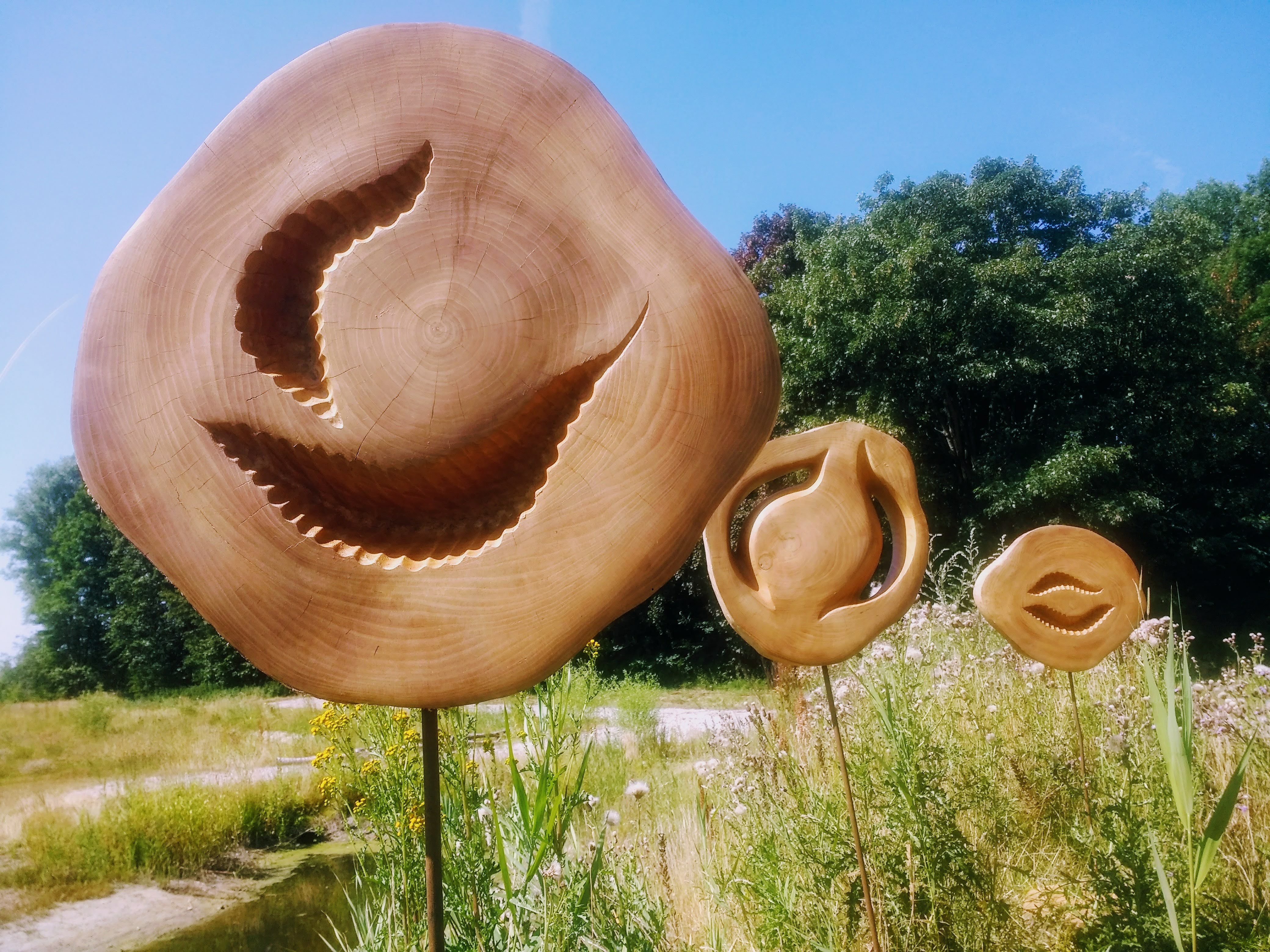 Xerxa wood sculpture